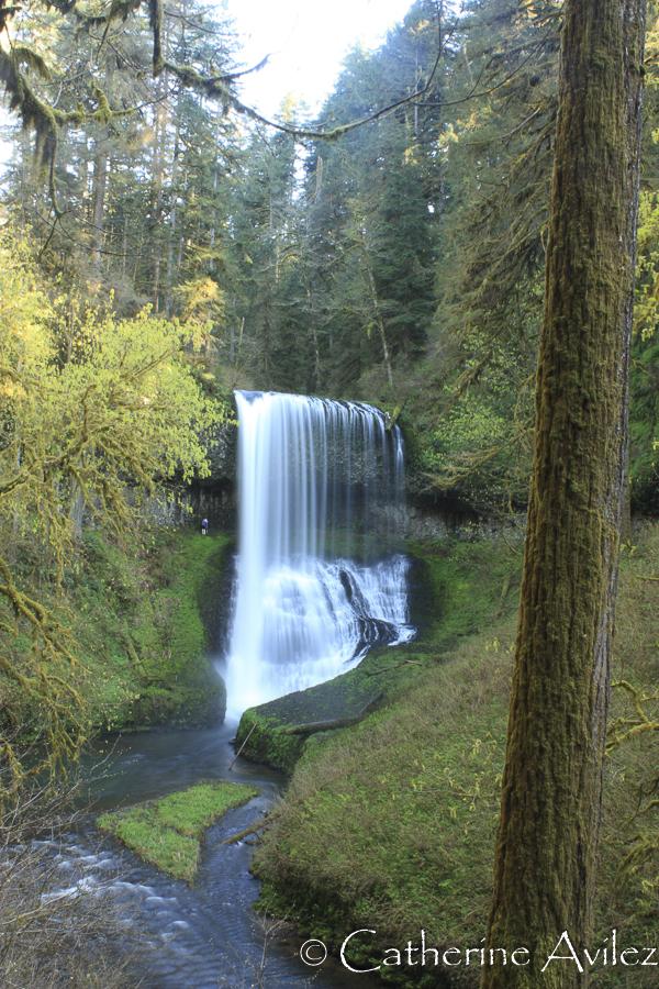 Lower South Falls-
