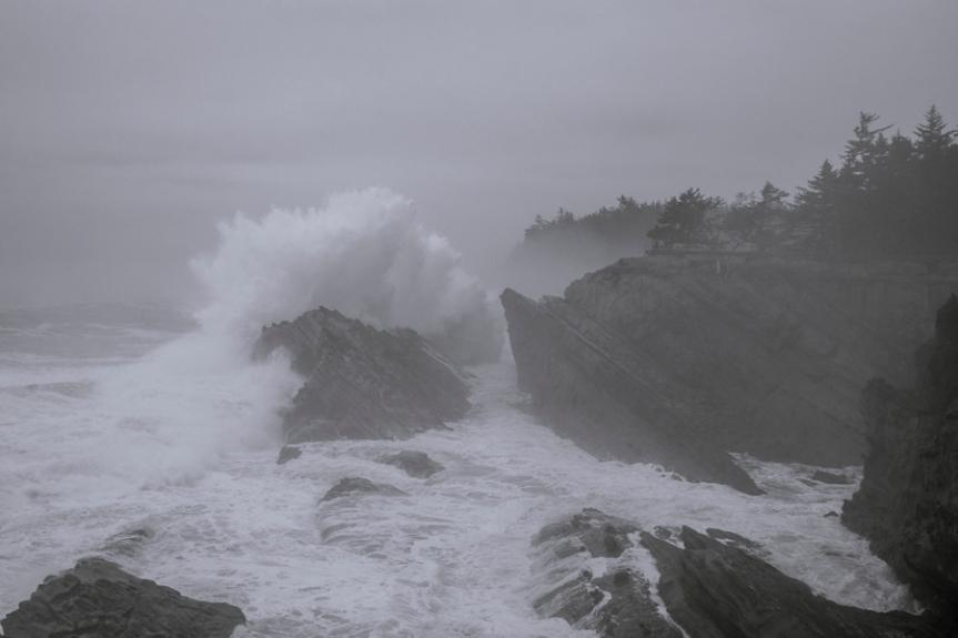 Cape Arago-3437