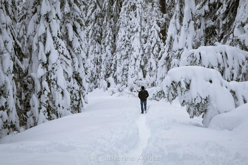 Snow-1020